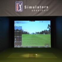 Simulator Image